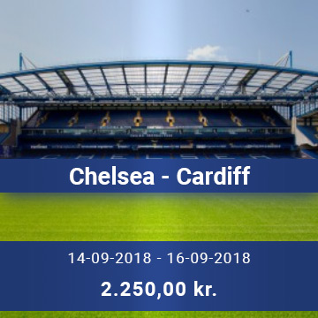 Travel Sense A/S - Chelsea - Cardiff
